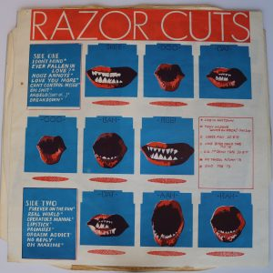 Rare Punk Records - Razor Cuts Buzzcocks LP